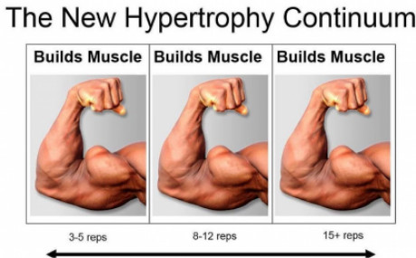 How many reps should I do to build muscle?