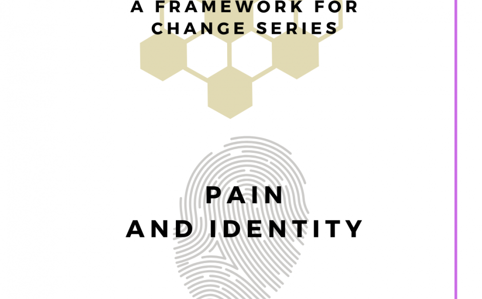 Pain, identity, motivation, control and choice ; A framework for change